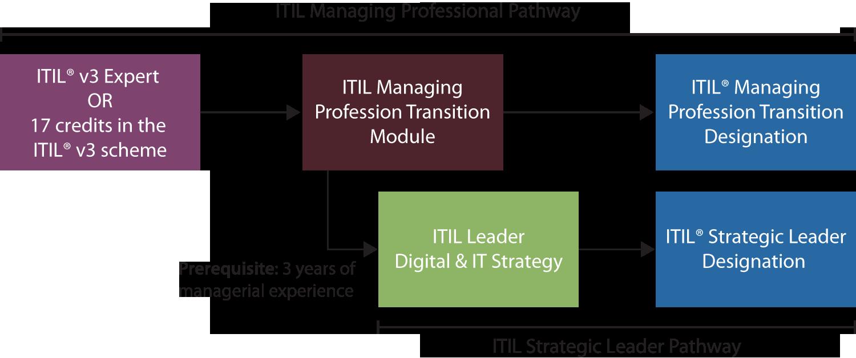 Managing Professional Transition